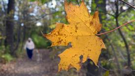 Experience Fall Colors In Starved Rock Country!